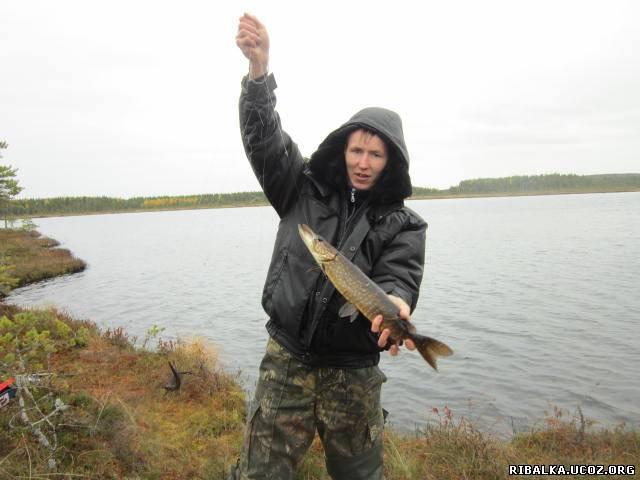 рыбалка на реках карелии форум