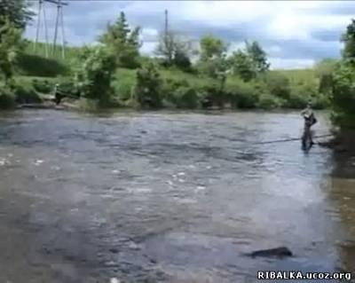 Ловля головля на малых реках