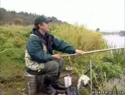 Елец, плотва, голавль. Москва-река