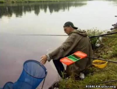 Рыбалка на канале им. Москвы
