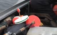 Видео Ловля щуки на кружки