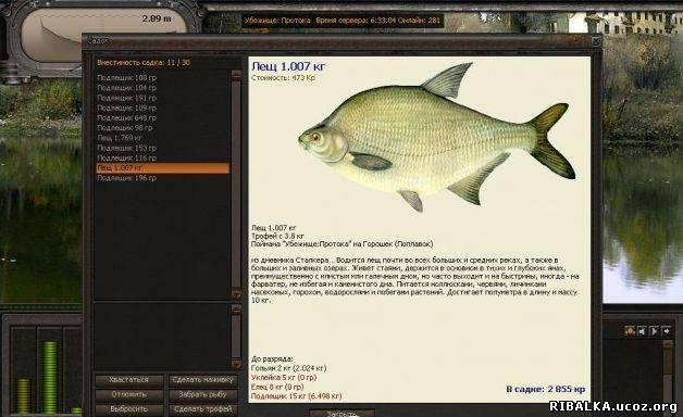 Atom Fishing 4