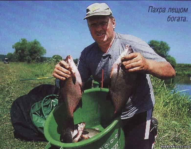 где в подольске можно бесплатно ловить рыбу