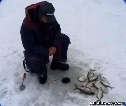 Ловля леща зимой видео смотреть онлайн