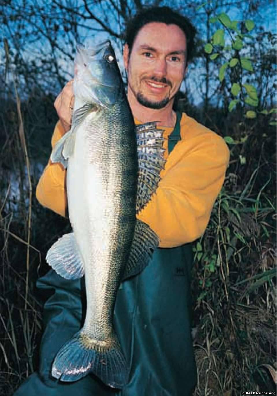 ловил рыбу на немецком