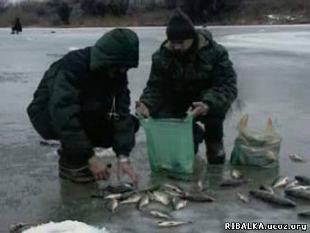 Рыбалка зимой на волге видео смотреть