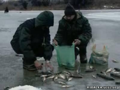 Рыбалка зимой на Волге