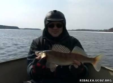 Рыбачьте с нами. Апрель 2011
