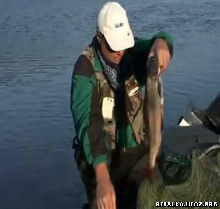 Рыбалка на большой воде половодье