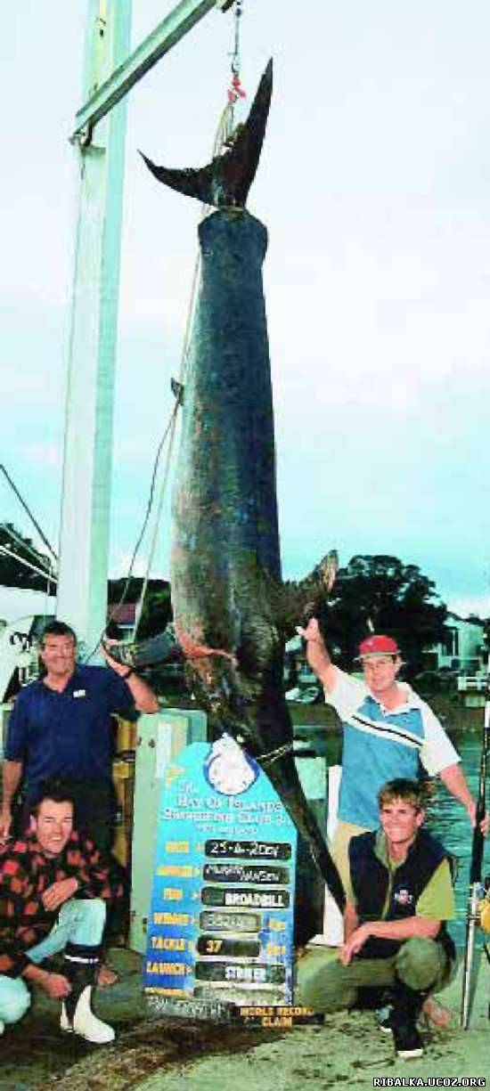 гигантская рыба-меч