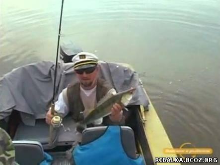 Апрель 2011 донная ловля ловля судака