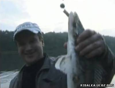 Рыбалка в Воронеже