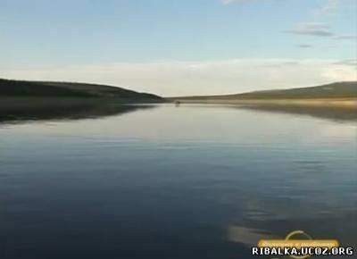 Ловля тайменя на таежной реке