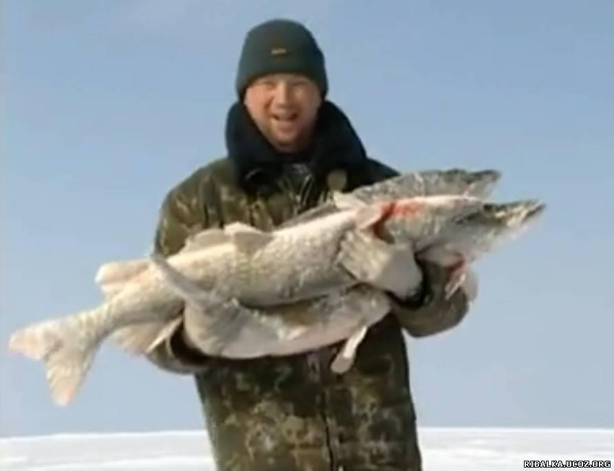 рыбалка получи подледники