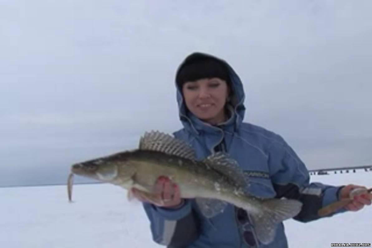 рыбалка на волге.зима.судак