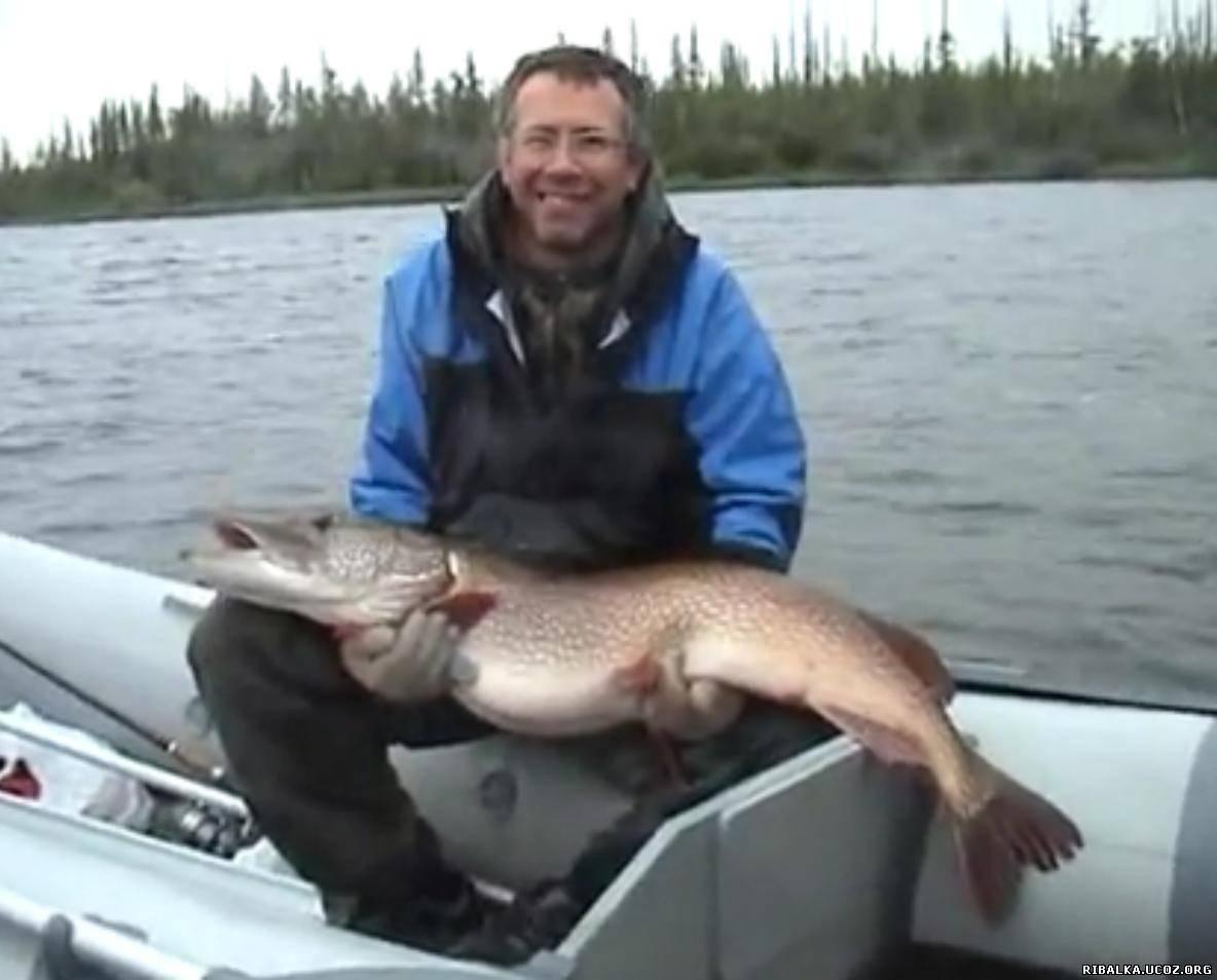 видео про рыбалку на щуку ютуб